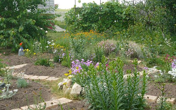 Лунный посевной календарь на апрель 2017 года садовода и огородника – таблица, благоприятные и неблагоприятные дни для посадки культур и посева семян