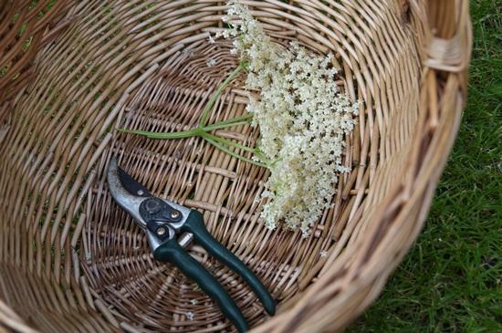 Домашнее варенье из крыжовника на зиму: простой рецепт