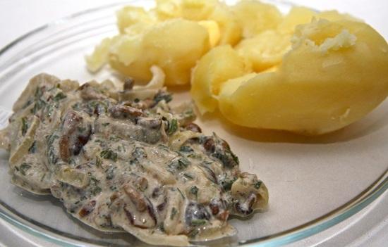 Что приготовить из свежих опят на зиму и на ужин: пошаговые фото-рецепты грибных блюд