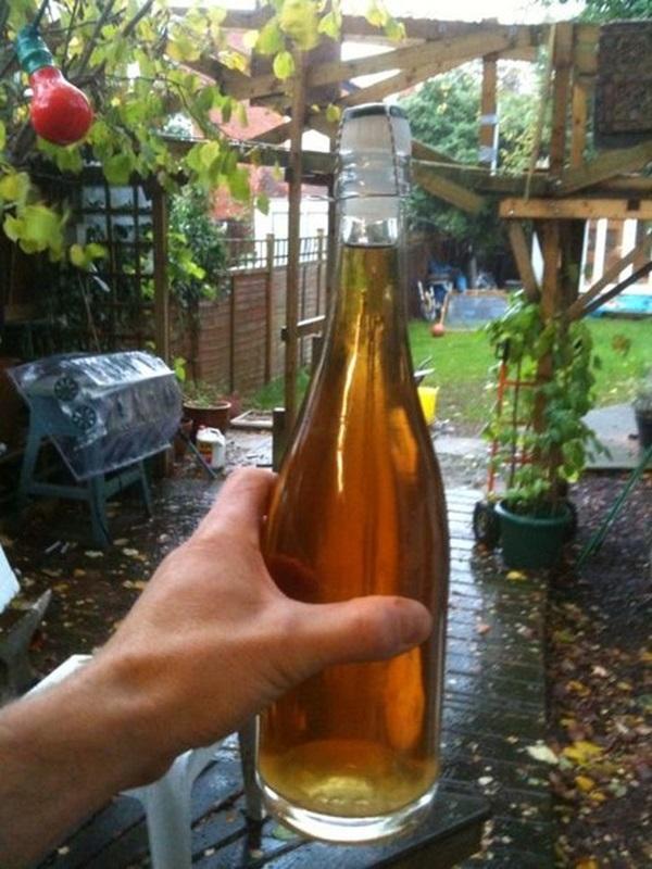 простой рецепт приготовления яблочного вина в домашних условиях