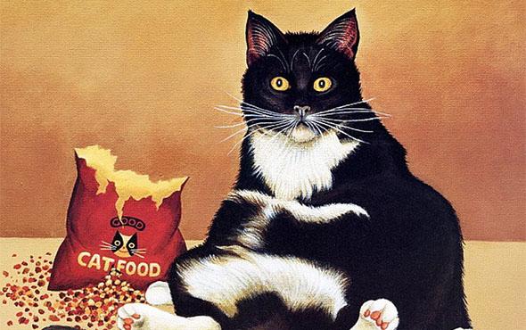 Корма для кошек суперпремиум класса: рейтинг