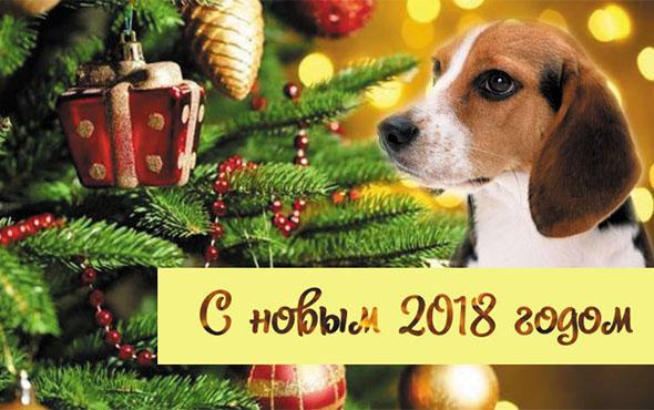 Подарки 2018 года