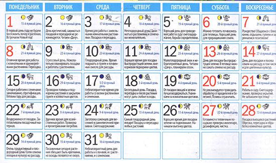 Лунный посевной календарь на январь 2018: таблицы для огородников и цветоводов