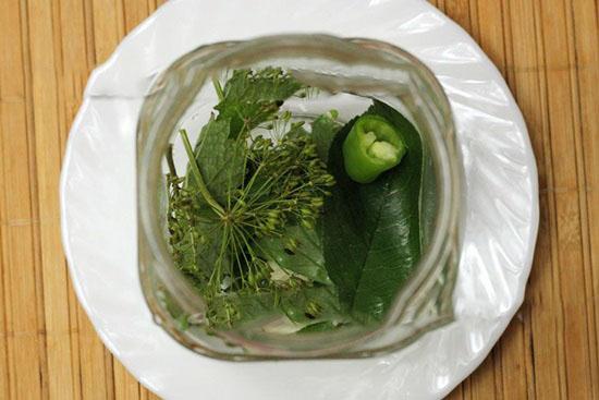 Малосольные огурцы с чесноком и зеленью быстрого приготовления в банке, кастрюле, пакете – простые пошаговые рецепты с фото, видео