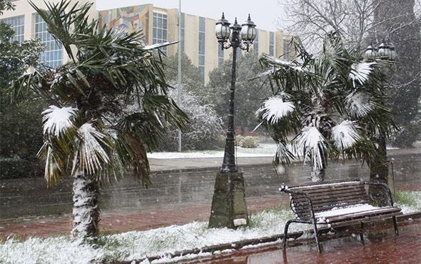 Погода в Сочи в январе 2019. Температура воды и воздуха рекомендации