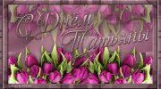Татьянин день 25 января: прикольные и красивые открытки и картинки гифки с поздравлениями Тане маме и бабушке, подруге и жене
