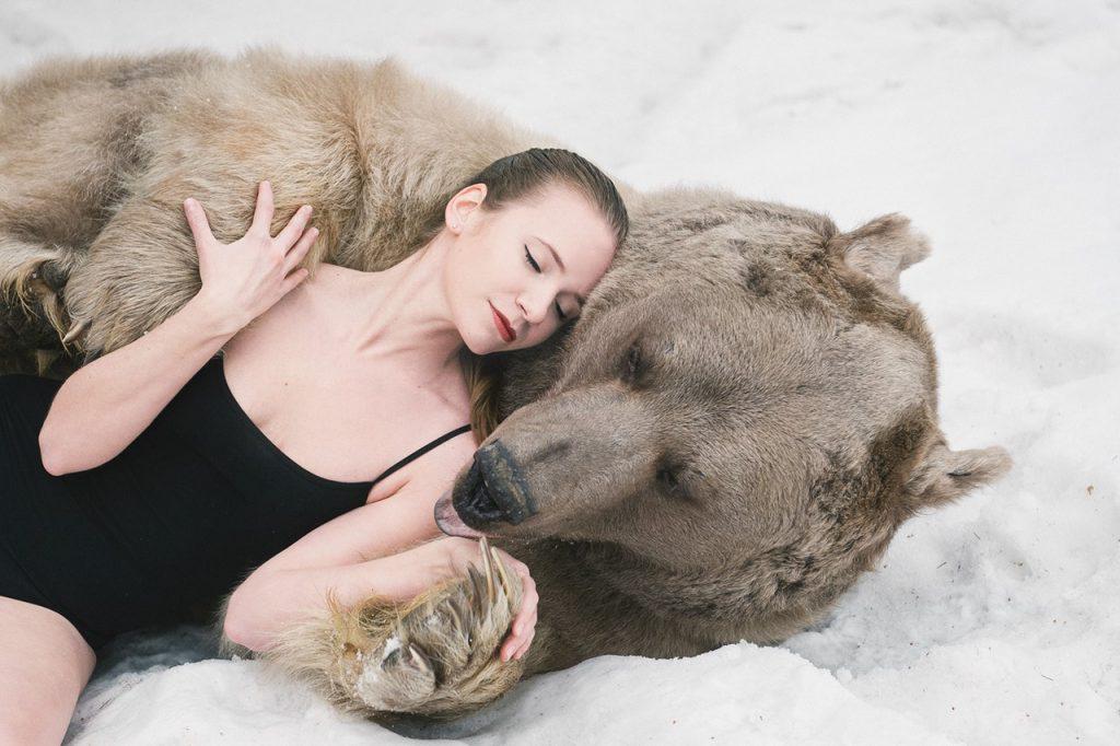 К чему снится медведь женщине замужней незамужней сонник