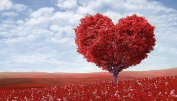 Сердечный тест: что ждет вас в личной жизни в ближайшее время