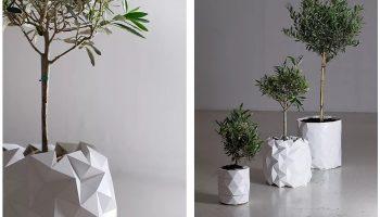 Кашпо от английской дизайнерской студии растет вместе с растением