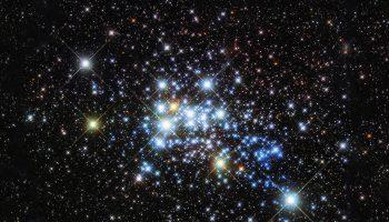 К ним тянется душа: топ-12 фактов о звёздах