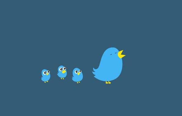 Психологический тест «Пташка на хвосте принесла»: выберите птицу и узнаете что вас ждёт в мае