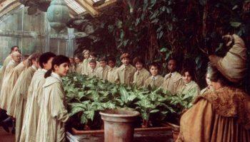 Хуже не придумаешь: странные растения, которые могут напугать