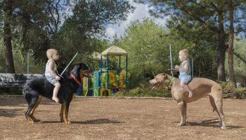 «Спасите, наш папа фотограф»-смешной фотопроект о близнецах