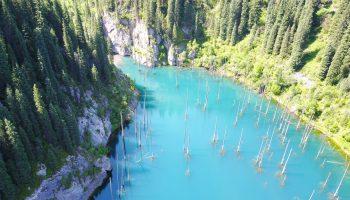 Фантастическое озеро: лес растет прямо из воды