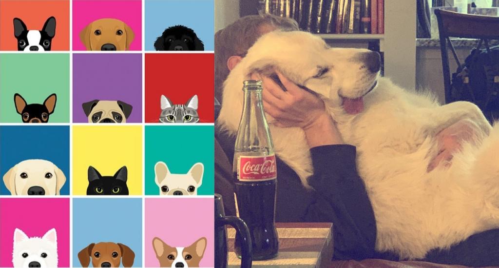 15 смешных фото, сделанных в максимально правильный момент