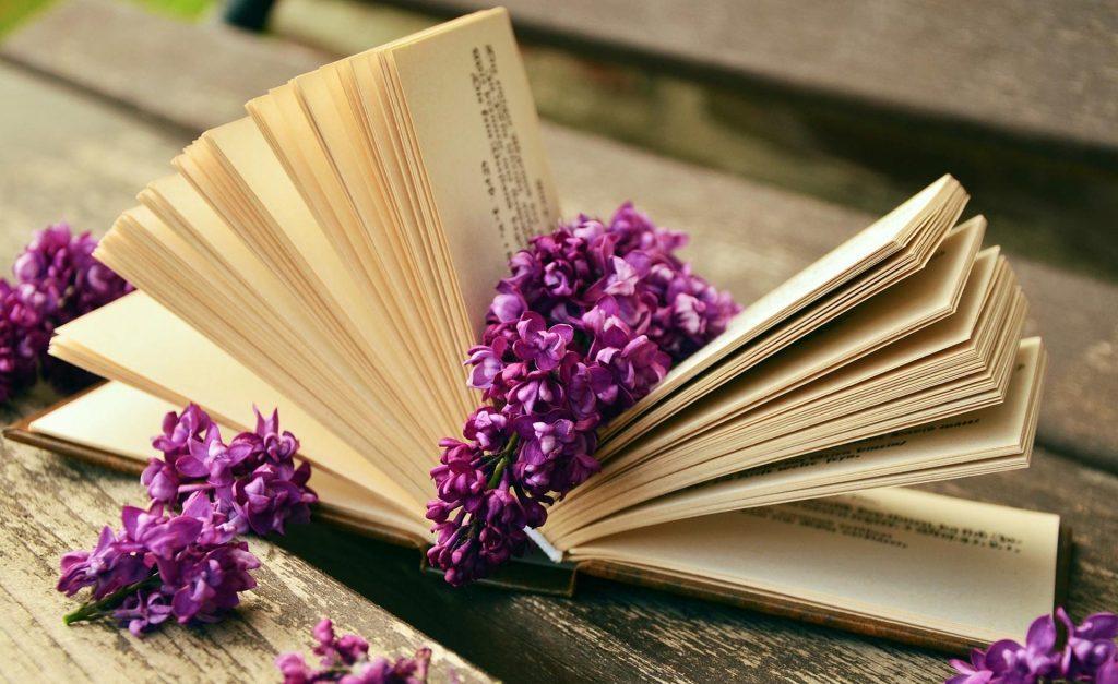 Печатная мудрость: 3 книжных бестселлера об отношении к жизни и вещам