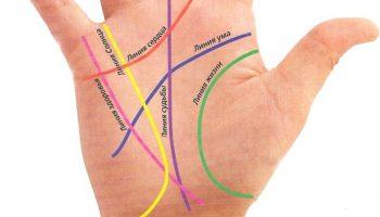 Какие знаки на руках сулят богатство: 3 денежных символа на ладони
