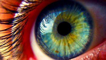 «Очи черные, очи страстные: что можно сказать о характере человека по цвету глаз