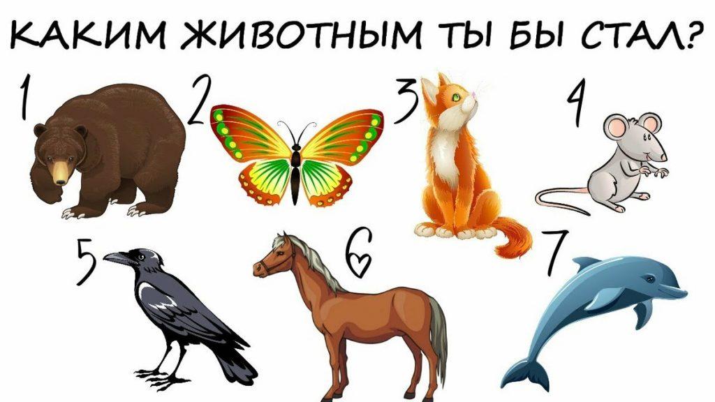 Тест: выберите животное и узнайте какой у вас характер