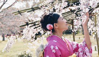 Японская фантазия творит чудеса: услуги и вещи, которые могли придумать только в этой стране