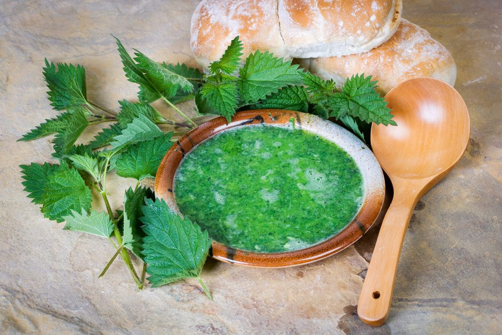 Время молодой крапивы: рецепт зеленого супчика из жгучей травки