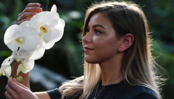 И цвела она долго и пышно: как простой уход заставит вашу орхидею цвести круглый год